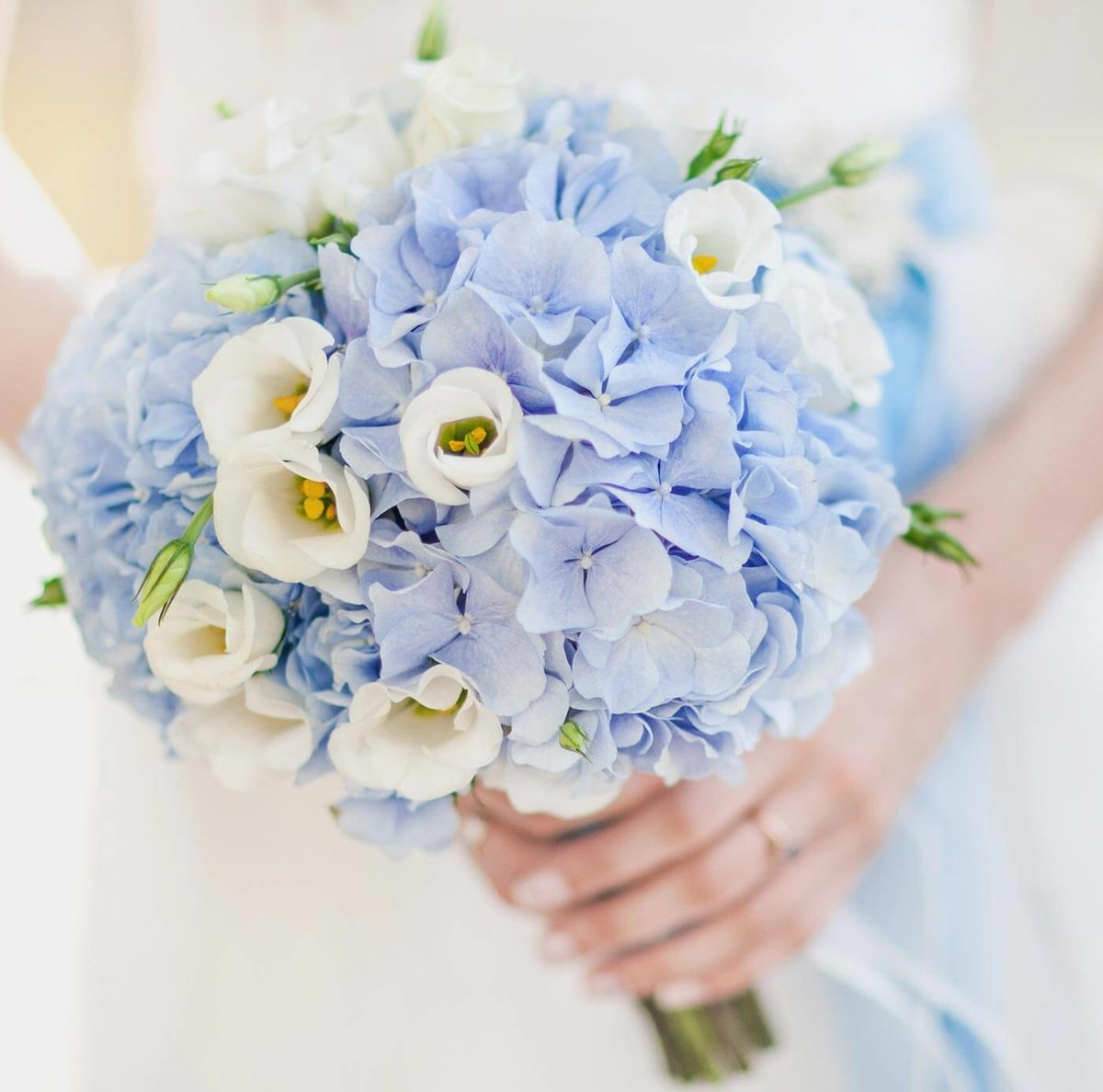 Свадебный букет невесты в голубых тонах, интернету минск какие