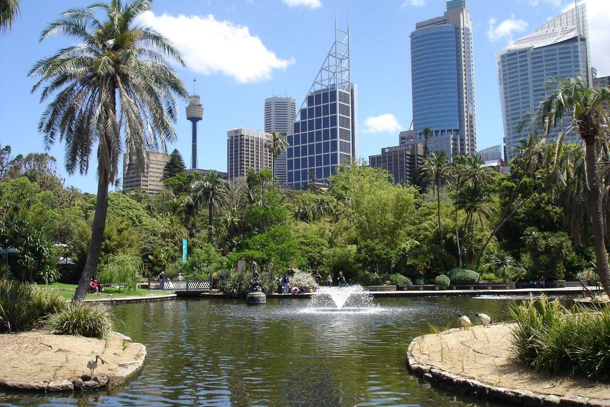 Австралийский национальный ботанический сад фото