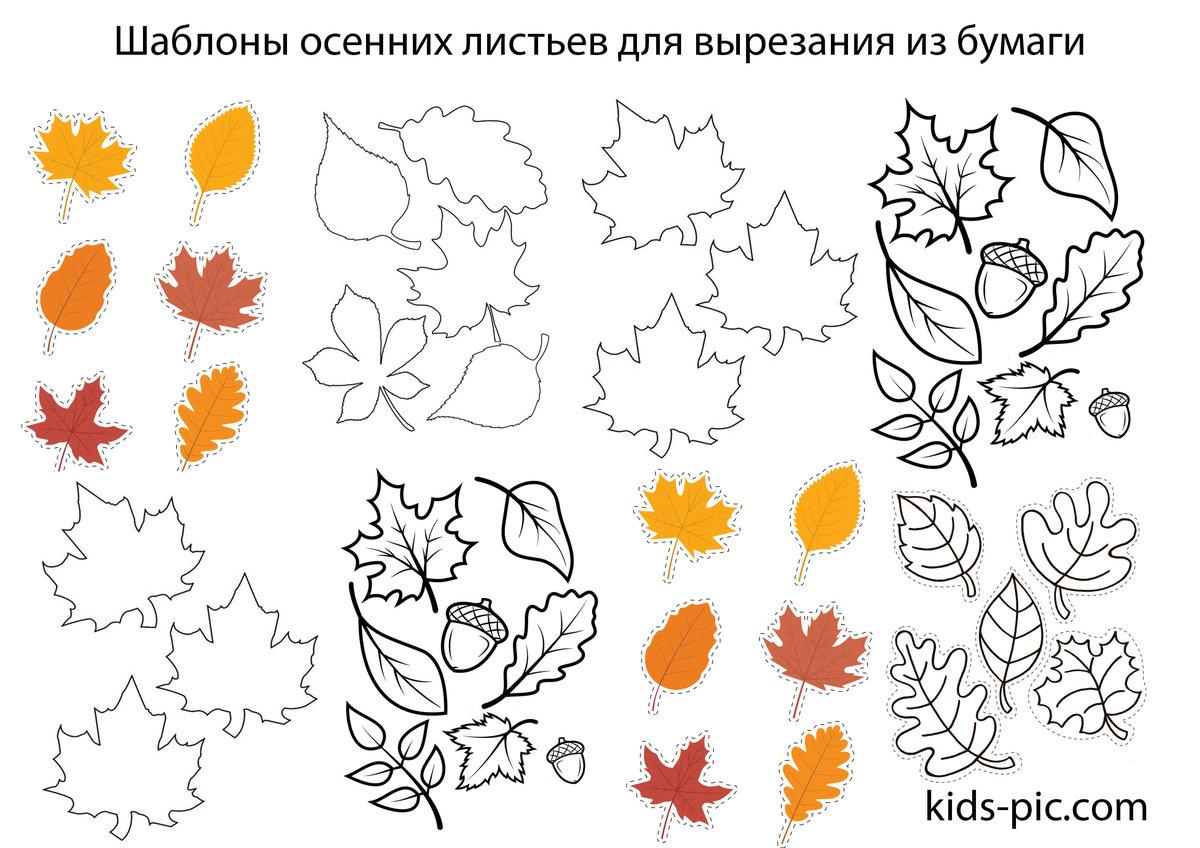 Осенние листья картинки для оформления шаблоны вырезать