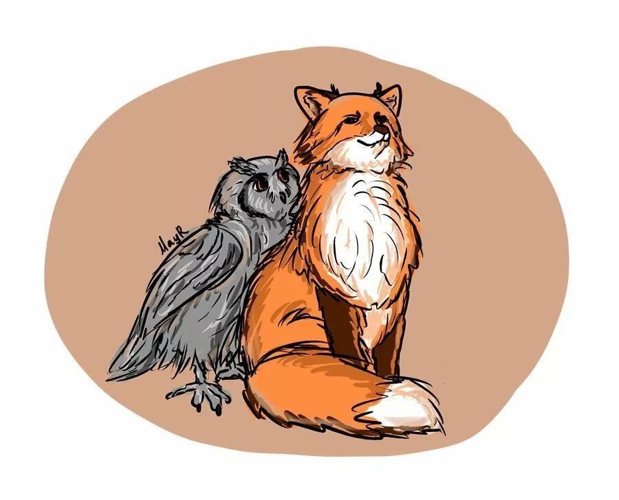 Лиса и сова рисунок