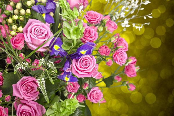Картинки по запросу фото букетів квітів хризантем