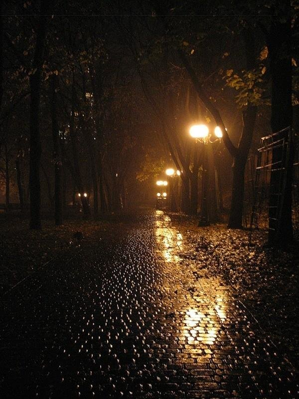 чем красивые картинки вечернего дождя сегодняшний день карьере
