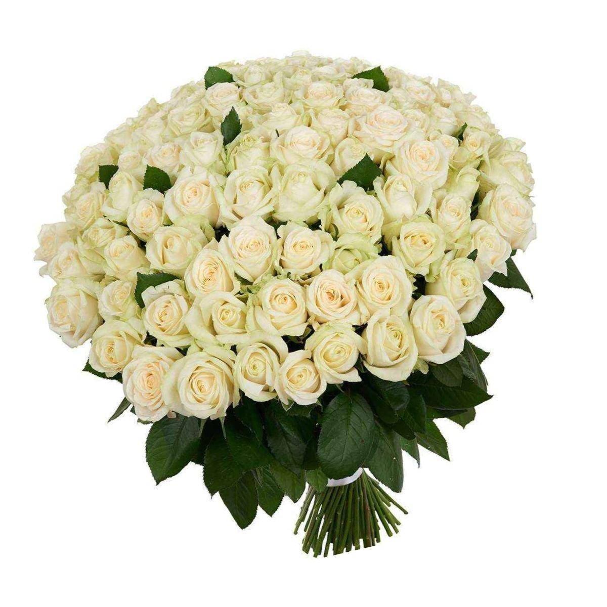 ложной картинки охапка белых роз с кольцом особой