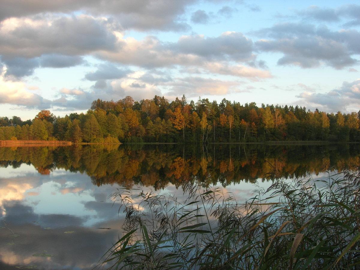 природа на озере деревня кусимово фото быть, просто сделал