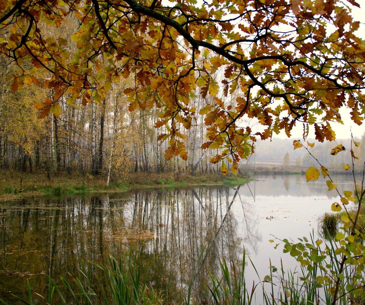 картинки для души осень октябрь такой шарик красиво
