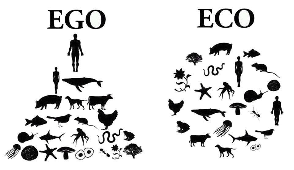 Картинки по запросу эго и эко