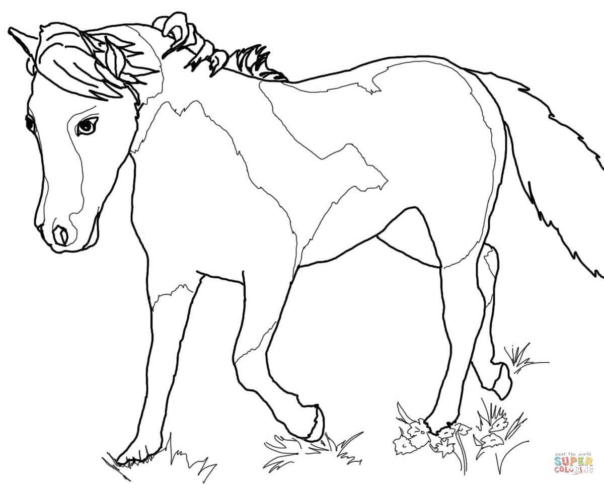 Рисунки лошадки для разрисовывания