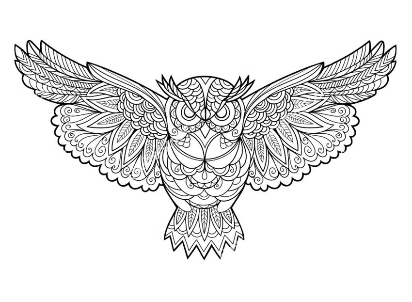 «Раскраски антистресс совы Раскраска Совушка» — карточка ...