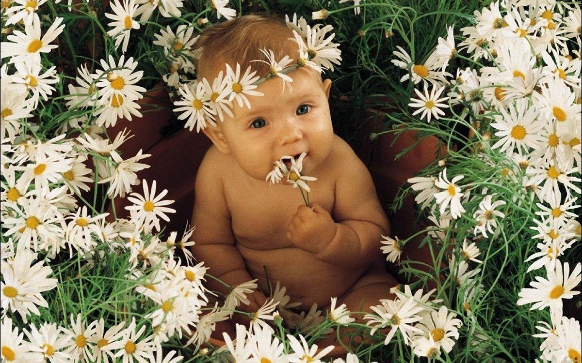 Открытки с малышами в цветах
