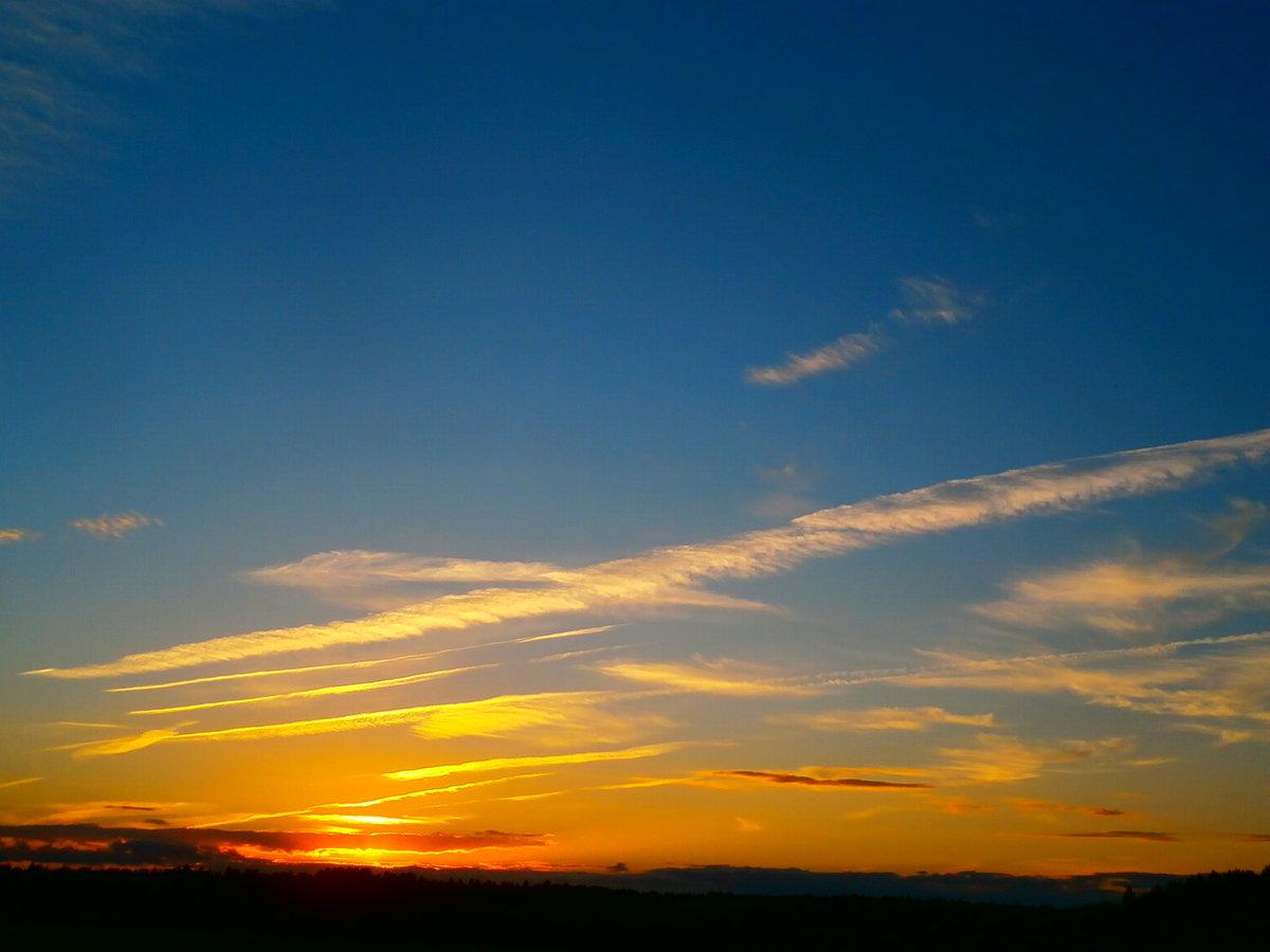 сад утро небо картинки ребят