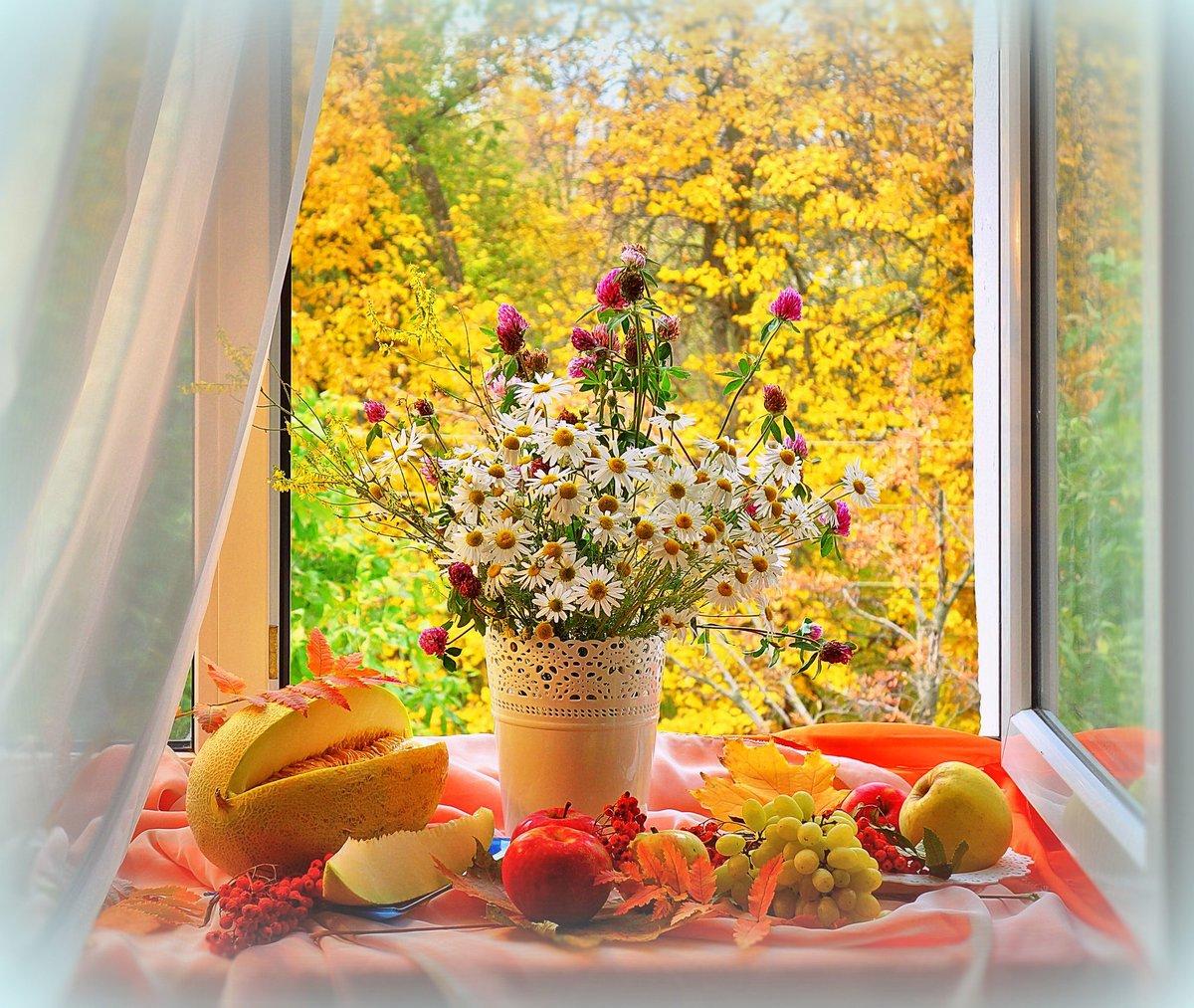 Приколы, открытки осеннее утро вид из окна натуральную