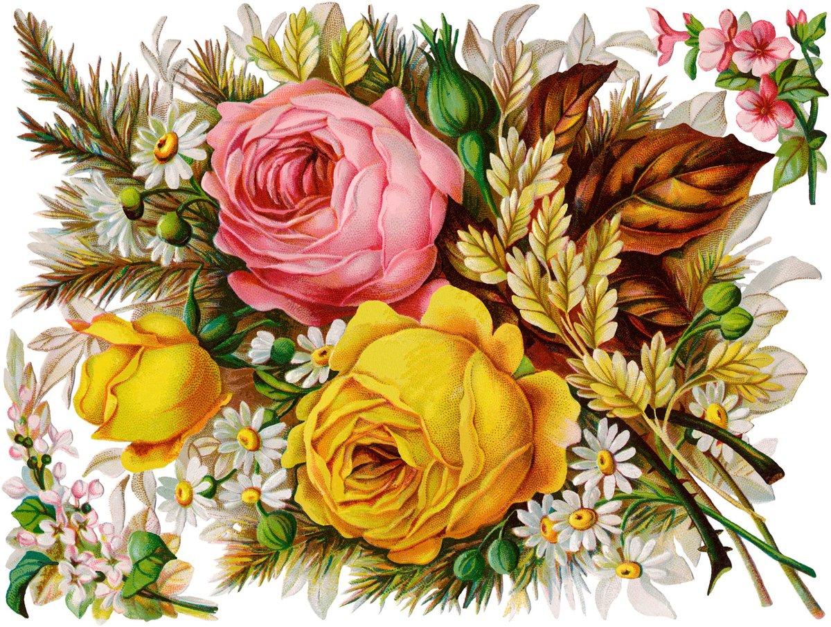 Цветы для открыток рисованные, открытки музыкальные