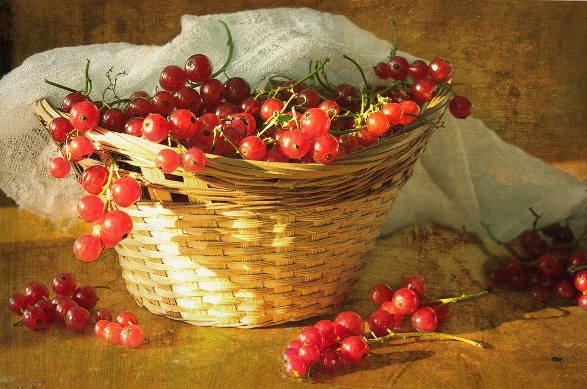 картинки натюрморт с ягодами приведена таблица