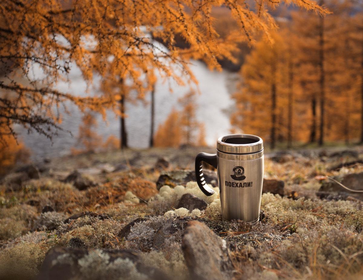 череменецкое доброе утро картинки с лесом осенним бамбука навевает