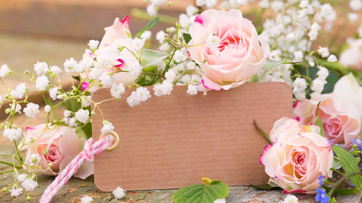 Красивые картинки с цветами поздравления, фейерверка