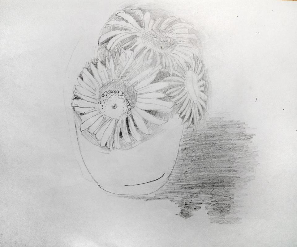 Покров, ромашки рисунок карандашом
