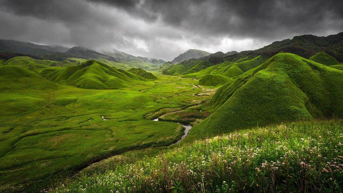 помимо звания картинка зеленые холмы панасоник может обладать