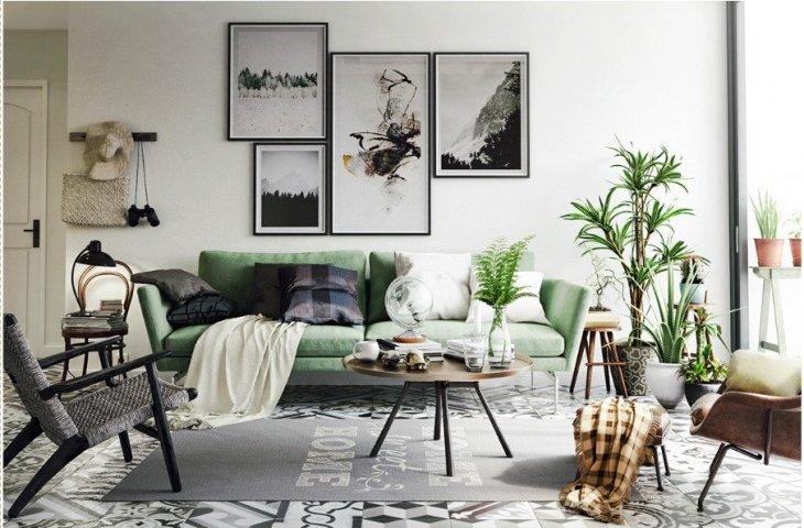 Коллекция комнатных растений в гостиной с зеленым диваном