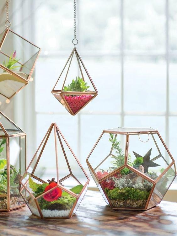 Faça você mesmo Terrários -  jardins dentro do vidro