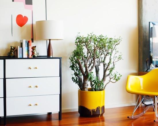 Растение в необычном горшке возле дизайнерского кресла-качалки
