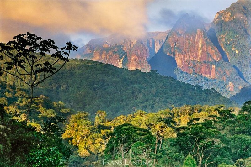 Бразилия – волшебная страна, страна удивительно красивых мест, одно из которых (статуя Иисуса-Искупителя) включено в список Семи новых чудес света. Если Вы хотите зарядиться позитивной энергией на целый год, то лучшего места для отдыха Вы не найдете — бразильцы умеют веселиться как никто другой.
