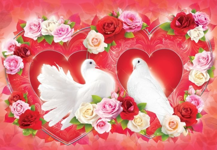 Голуби день свадьбы открытки красивые, картинки