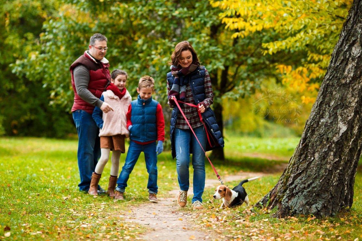Прогулки всей семьей картинки