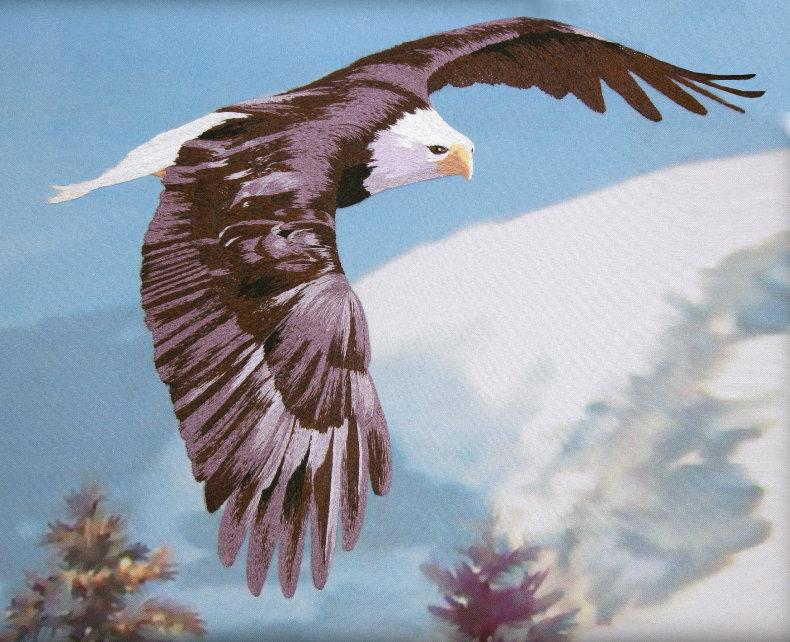 Днем, открытка полет орла
