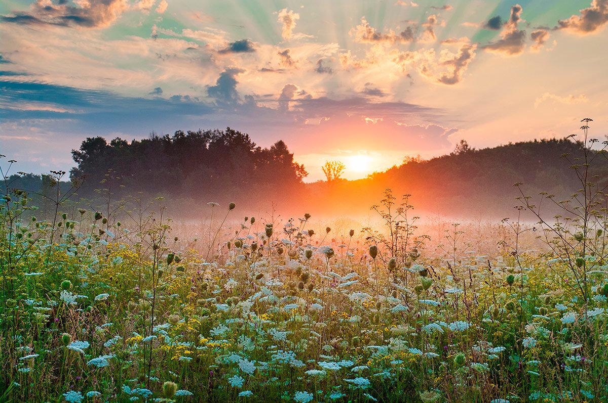 открываются красивые доброе утро картинки рассветы летом чили