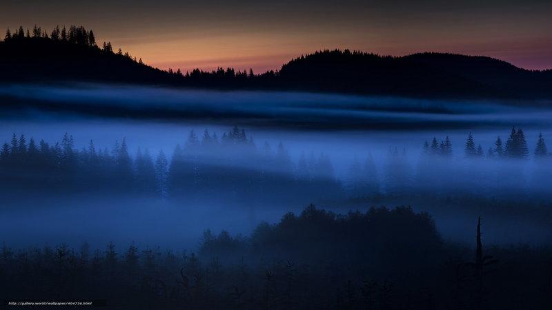 туман ночью