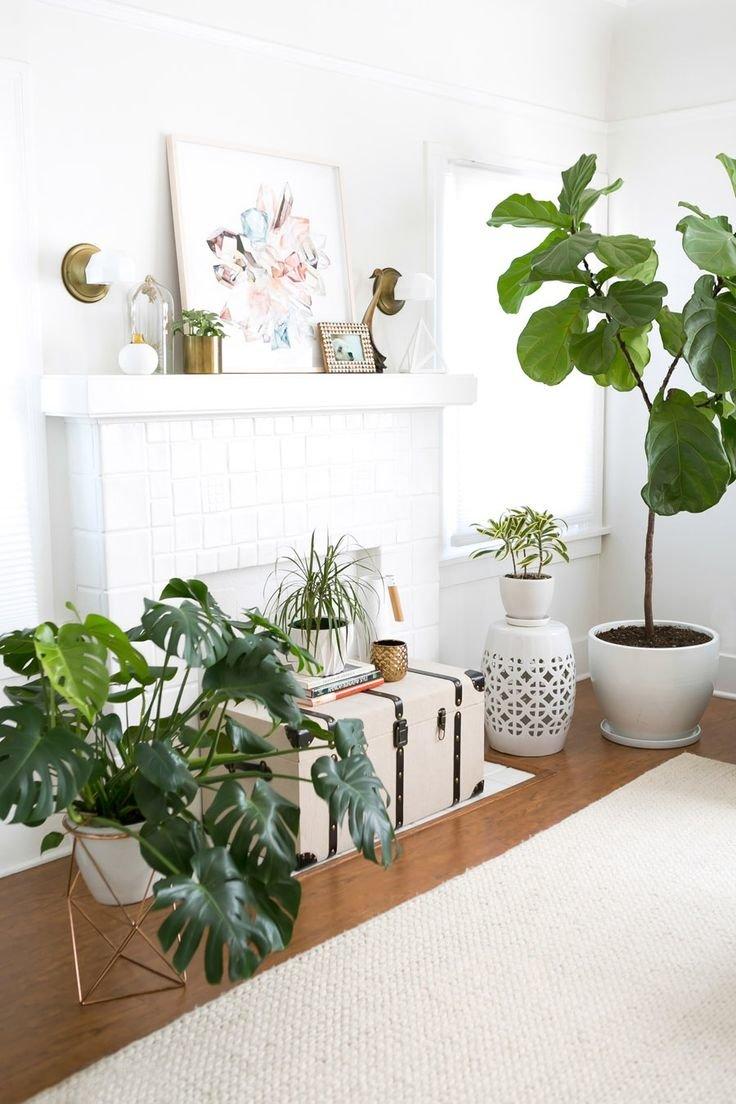 Растения в гостиной с белым фальш-камином