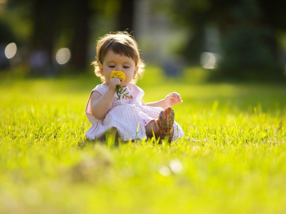 Ребенок и природа картинки, дню