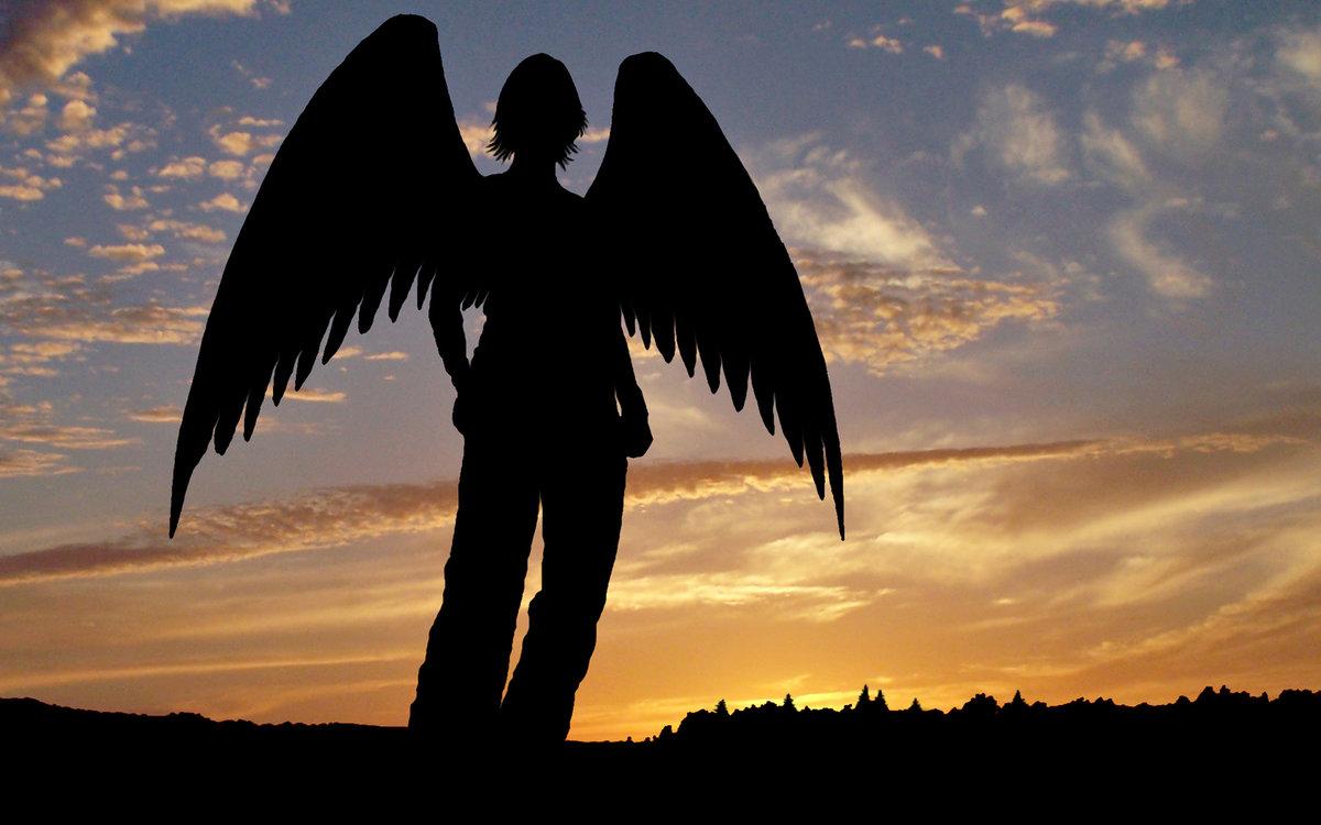 фото людей с крыльями только