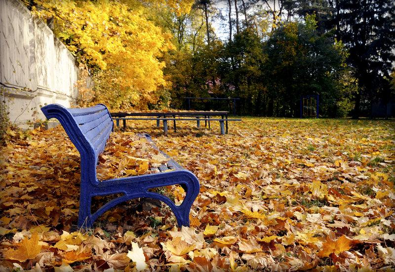 чудесная пора листопад