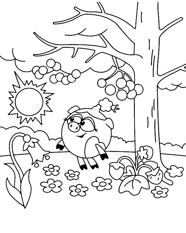 «Раскраска Смешарики. Нюша гуляет по лесу» — карточка ...