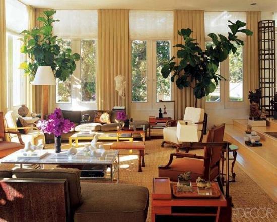 Секреты декорирования интерьера комнатными растениями