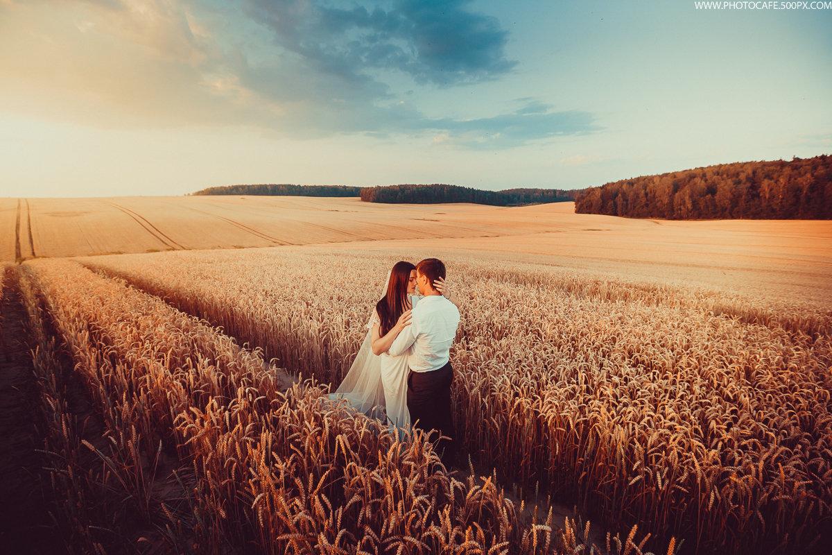 Шаблоны картинок для свадьбы база