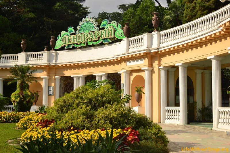 Парк «Дендрарий» в Сочи