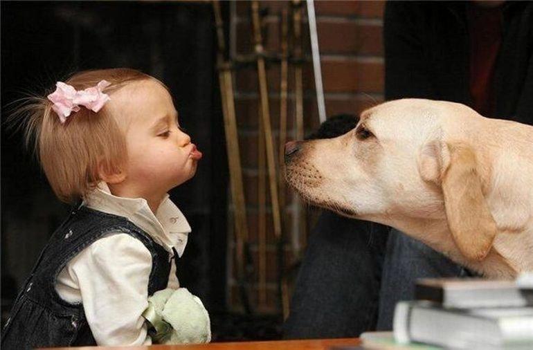 Дай поцелую картинки
