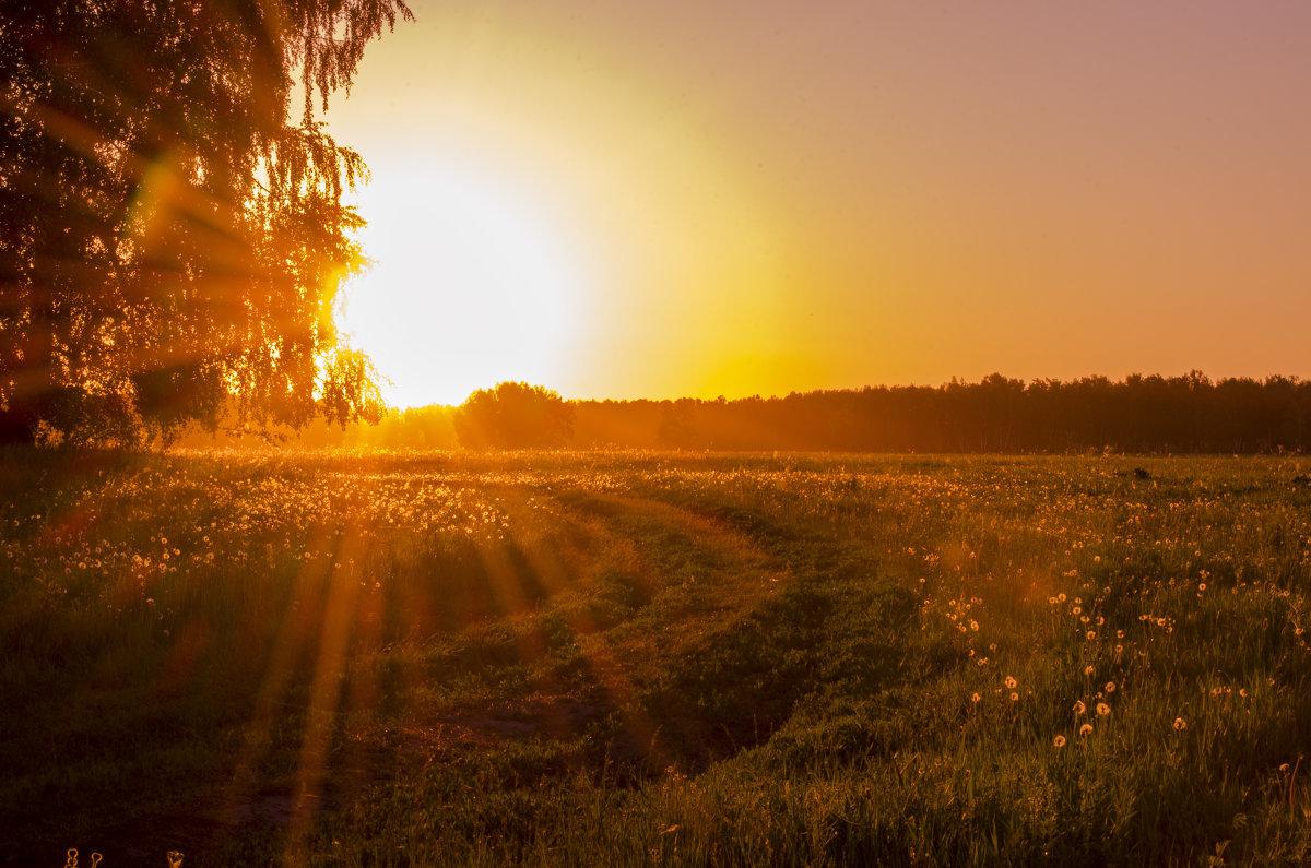 кожаный салон лето закат фото вообще-то