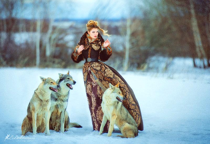 рот фотосессия с волками в москве области, где пересекаются