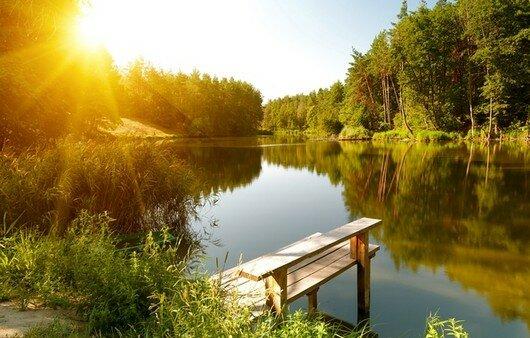 летние пейзажи