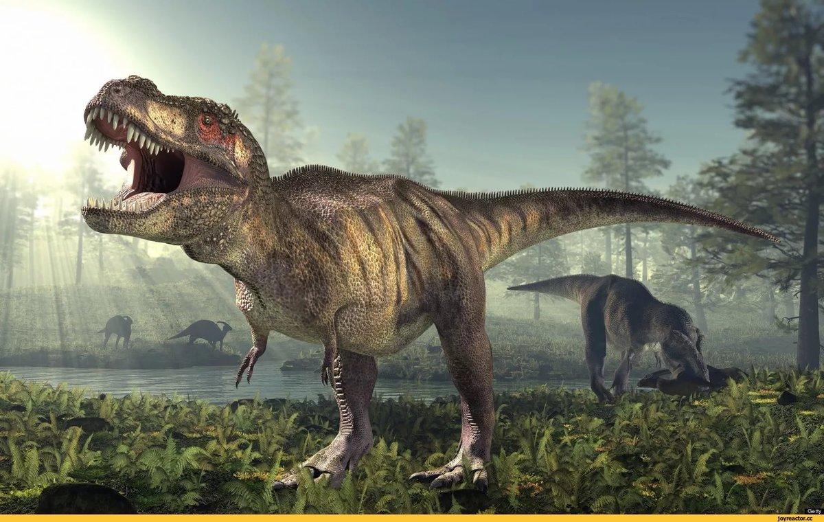 Картинки динозавра тирекса, телефон прикольные картинки