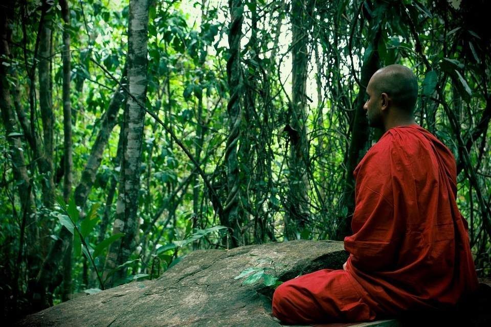 медитации на шри-ланке
