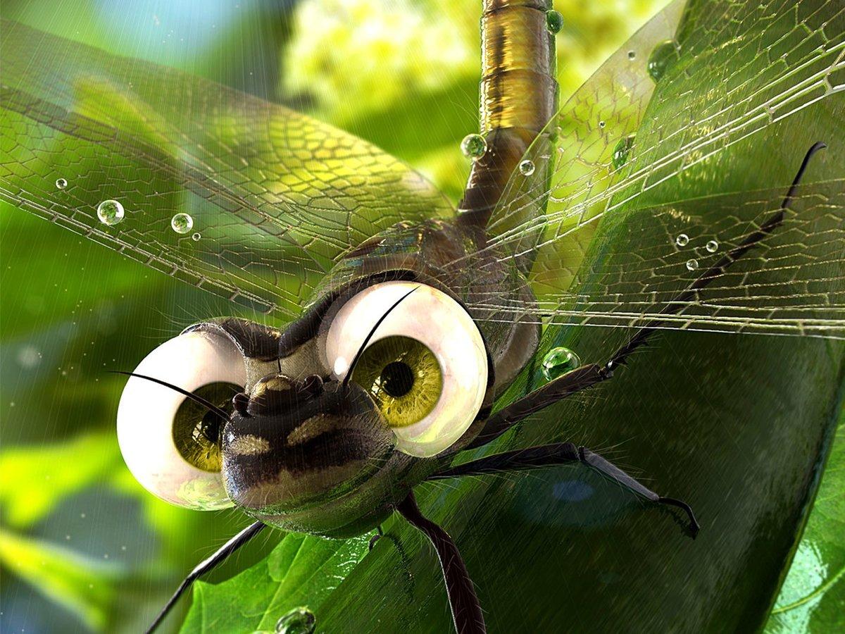 Картинка стрекозы прикольная