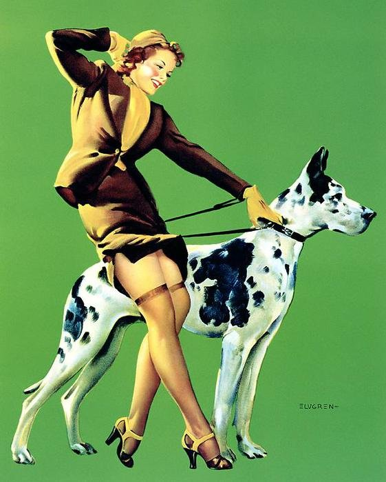 знакомства дама с собакой
