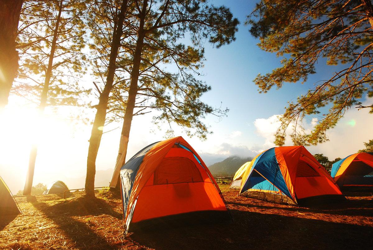 Картинки отдых в горах на природе