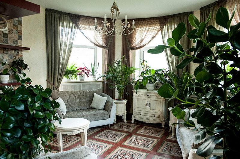 Комнатные цветы: как преобразить квартиру