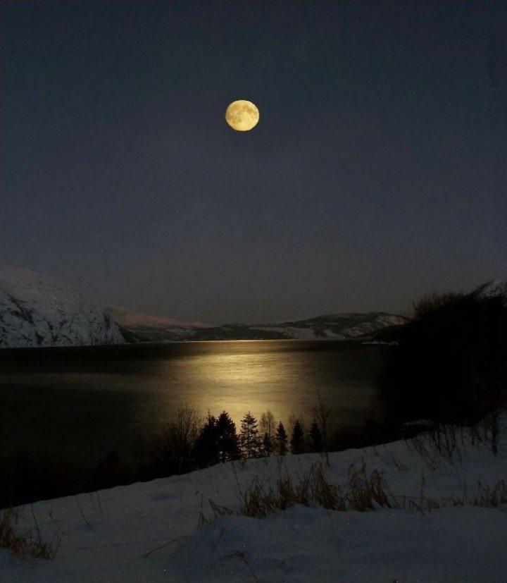 нее украли как фотографировать пейзаж с луной самец щеголяет