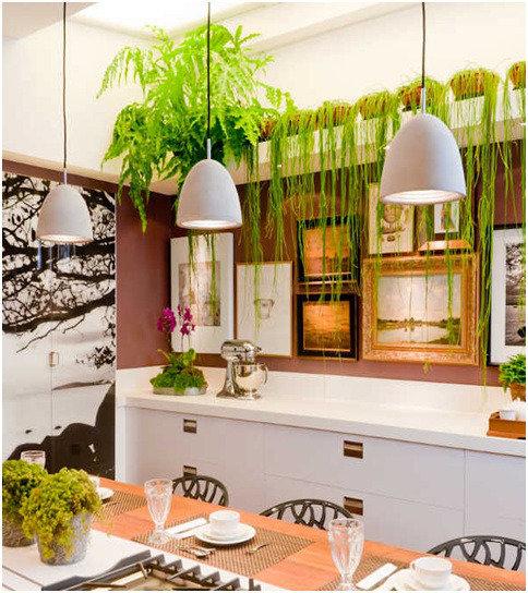 Комнатные растения для кухни (42 фото): как выбрать неприхотливые цветы своими руками, инструкция, фото и видео-уроки